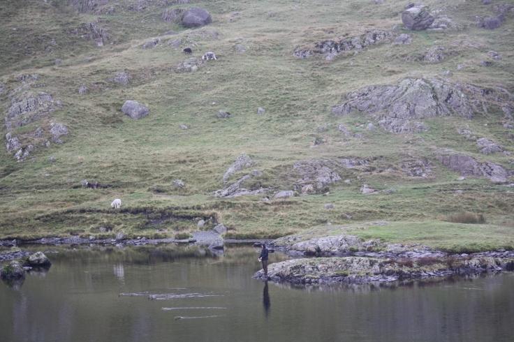 10 fishing